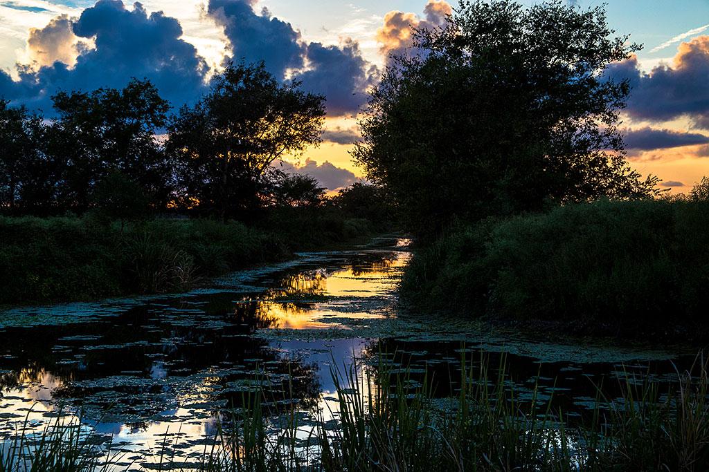 Bayou_sunset_4034